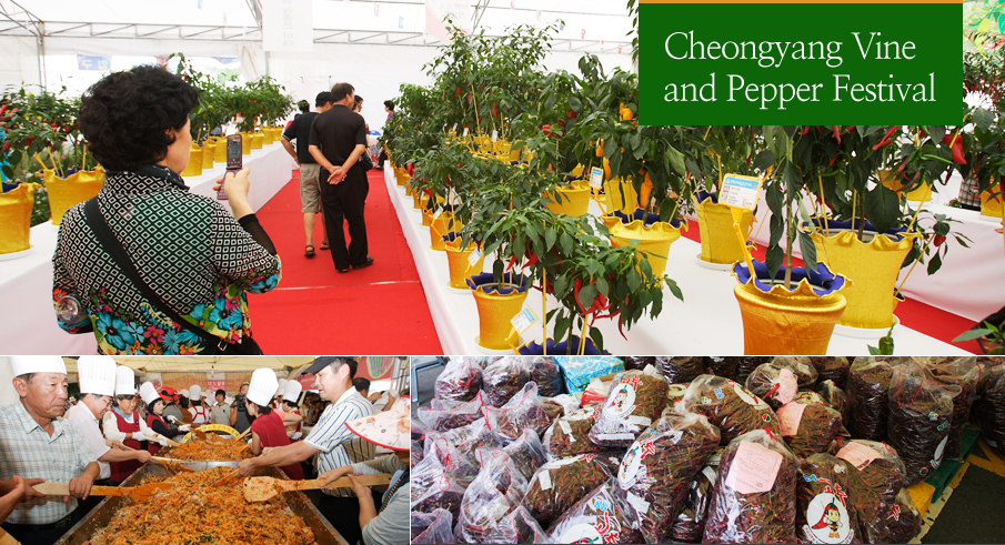 Cheongyang Vine and Pepper Festival